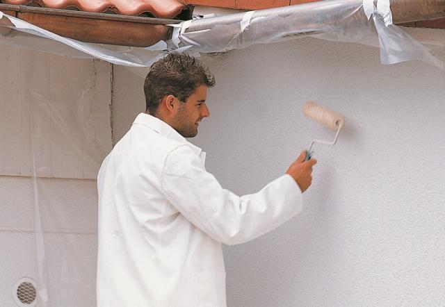 TOPDOM TRIUSO Pleskanje fasade